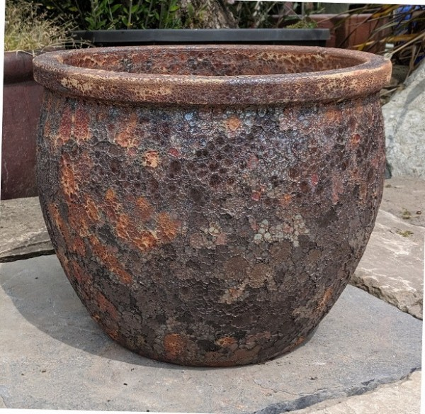 Atlantis Iron Ace Pot Medium-0