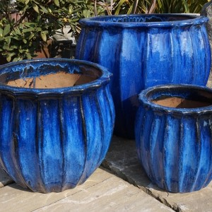 Glazed Star Fruit Pot Blue-58